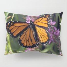 Monarch Splendor Pillow Sham