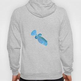 Blue pursed-lip boxfish Hoody