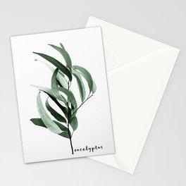 Eucalyptus - Australian gum tree Stationery Cards