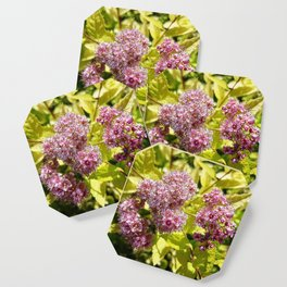 Lilac flowers Coaster