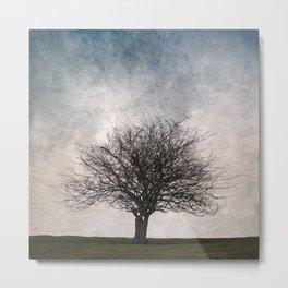 Lonely tree #2 Metal Print