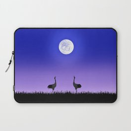 Two Mesmerizing Beautiful Fantasy Birds Worship Full Moon HD Laptop Sleeve