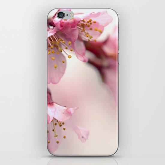 Gentle iPhone & iPod Skin