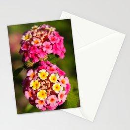 Lantana flowers Stationery Cards