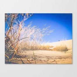 tall grass and sand at sleeping bear dunes Canvas Print