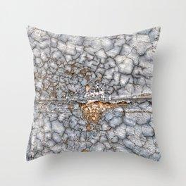 013 Throw Pillow