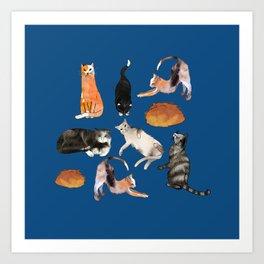 cats cats cats on blue Art Print