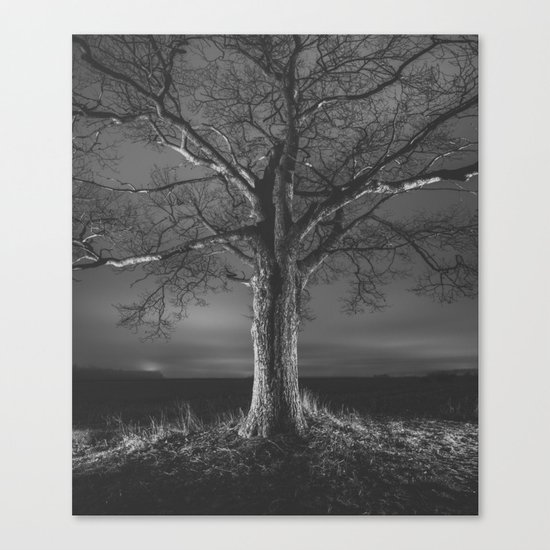Painted in Night Canvas Print