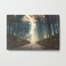 Into the Past Metal Print