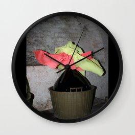 damigiana pasquale Wall Clock