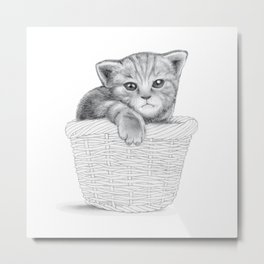 basket cat Metal Print