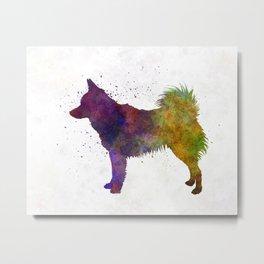 Schipperke in watercolor Metal Print