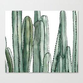 Desert Cactus Cluster Canvas Print
