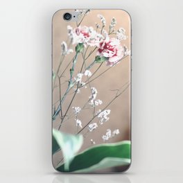 Fragile Coziness  iPhone Skin