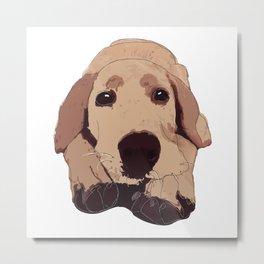 Golden Labrador Metal Print