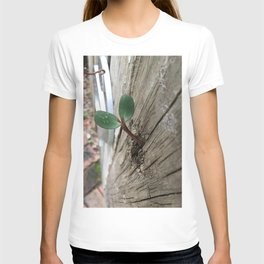 Plant sprout gate T-shirt