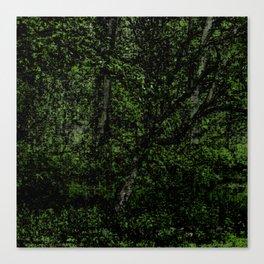 Green Season Canvas Print