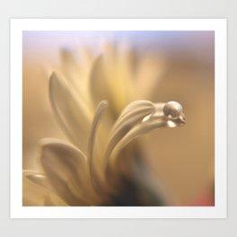 Waterbead Art Print
