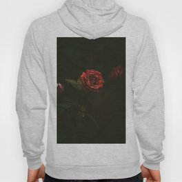 Red Rose Sensual Dark Floral Photo Hoody