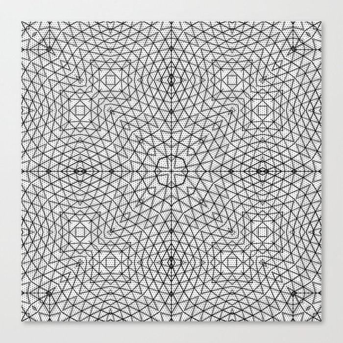 Black and White Wire Frame Canvas Print