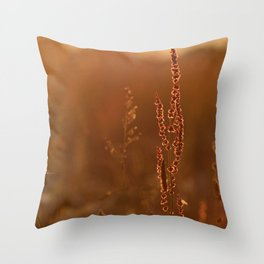 Sunset Straws Throw Pillow