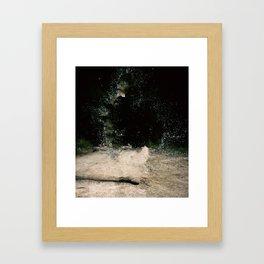 R.Signer Framed Art Print