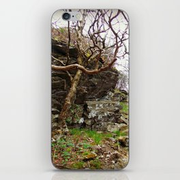 Room To Breathe iPhone Skin