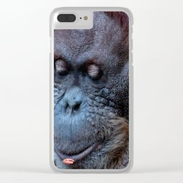 Portrait of a female orangutan Clear iPhone Case