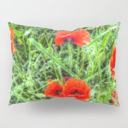 Poppy's Of Summer Pillow Sham