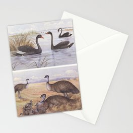 Neville W. Cayley - What Bird Is That? (1931) - Black Swan and Emu Stationery Cards