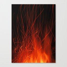 Fire 2010 Canvas Print