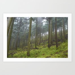 Up the Hill. Art Print