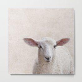 Lamb Portrait Metal Print