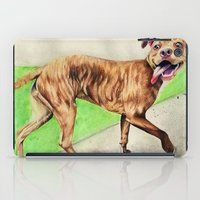pitbull iPad Cases featuring pitbull by Shannon Gordy