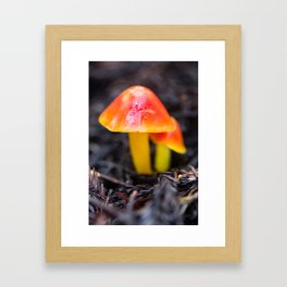 Fungi of My Dreams Framed Art Print