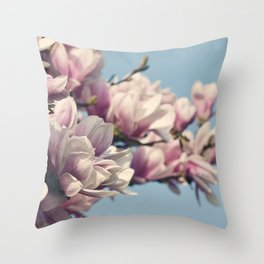 to the sky and back. Throw Pillow