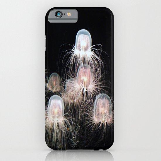 Jellyfish iPhone & iPod Case