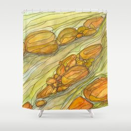 Eno River 17 Shower Curtain