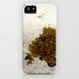 Lichen iPhone Case