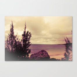 Scene From a Movie Canvas Print