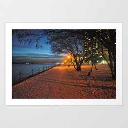 Fall During Winter Art Print