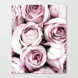 A Cascade of Perfectly Pink Roses Canvas Print