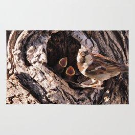 House Sparrow Keeping House Rug