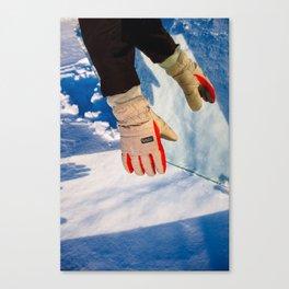 Snow Glove Canvas Print