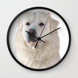Great Pyrenees dog Wall Clock
