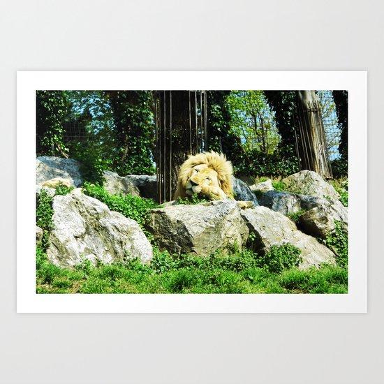 THE LION SLEEPS TODAY Art Print