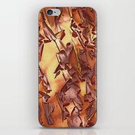 A STUDY OF MADRONA BARK iPhone Skin