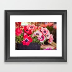 Anemones  and Bumblebee 5946 Framed Art Print