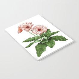 Gerbera Daisy Notebook