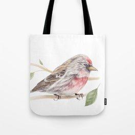 Bird - Male Common Redpoll Watercolour by Magda Opoka Tote Bag